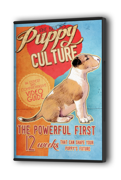 Puppy Culture - The powerful first 12 weeks